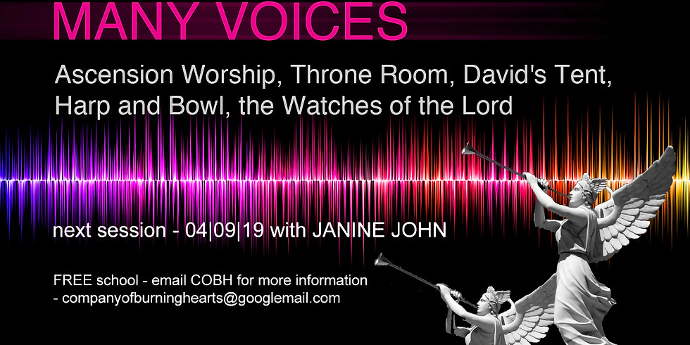 Many Voices with Janine John