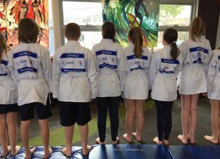 Sporting Schools Program: Judo