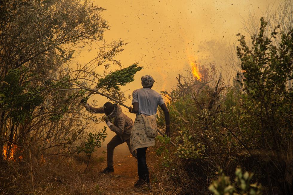 Volunteers from Ol Moran fight a raging bushfire in Laikipia.