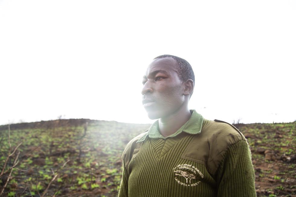 Joseph Gachoka, a game ranger for the Mukutan Conservancy, surveys the damage done by bushfire.
