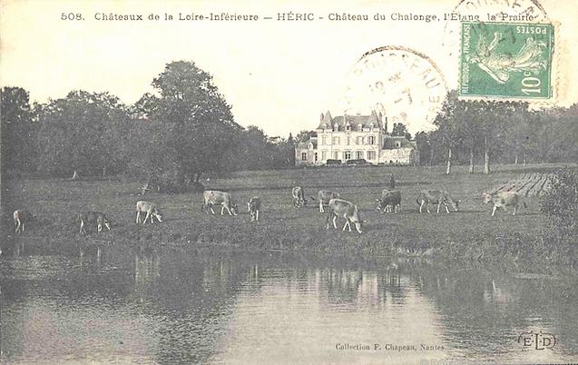 chateau chalonge vache - Etang.png