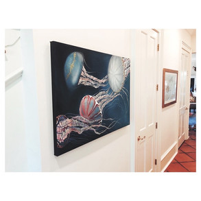 Jellyfish close-up