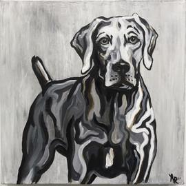 Dog Portrait on Grey