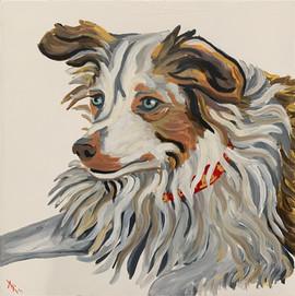 """Dog Portrait 12x12"""".jpg"""