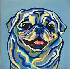 Pug Portrait on Blue