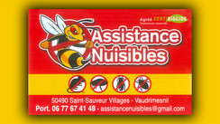ASSISTANCE NUISIBLES-site.jpg