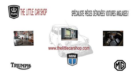 TLCS-site.jpg