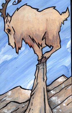 Ibex Old-Mountain.