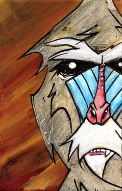 Sphink the Mandrill.