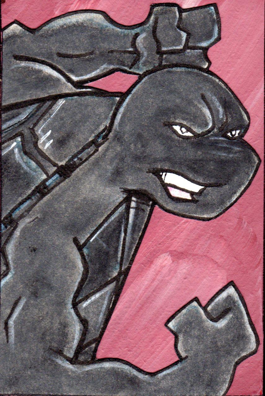 Raphael (intergalactic wrestler variant)
