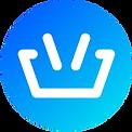 BasketCoin_logo_light-250x250_wbg.png