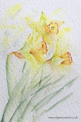Sunshine Daffodils Watercolour