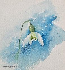 Snowdrop 1@2x.jpg