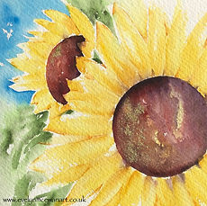My two sunflowers@2x.jpg