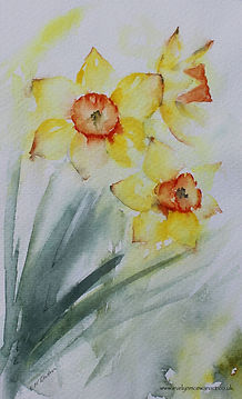 Dancing Daffodils Watercolour