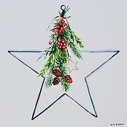 Christms Star