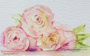 Peach Roses Trio Watercolour