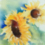 Sunflowers Watercolour