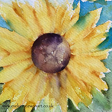 Sunflower1@2x.jpg