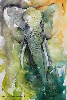 Elephant@2x.jpg
