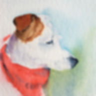 Ruby the Jack Russell watercolour