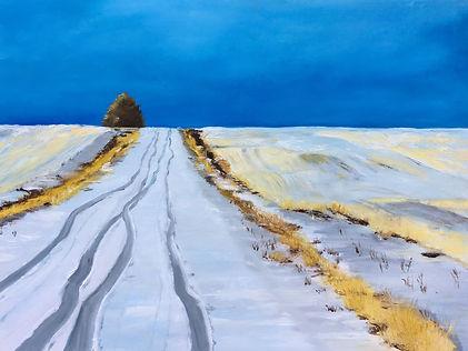Snow covered road prairie