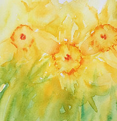 Yellow Daffodils Watercolour