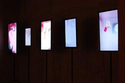 5 screen video installation, 2013