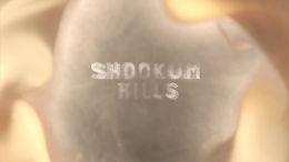 SHOOKUM HILLS