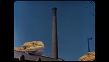la-reina-de-los-lagartos-the-lizard-que