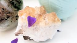 Citrine & Purple Petal