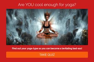 What's your yoga-type? Quiz. Berwick & Borders Yoga