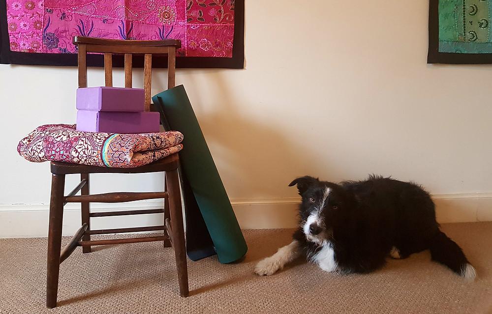 Chair, blocks, blanket, wall, mat and dog!