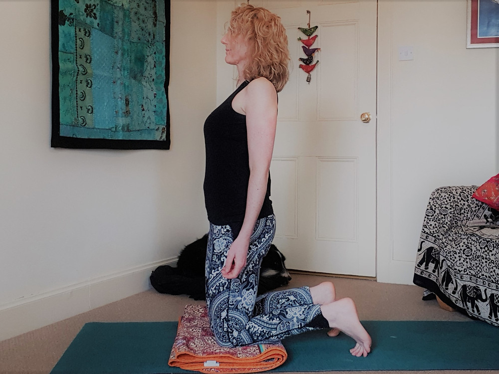 Blanket under knees for ustrasana
