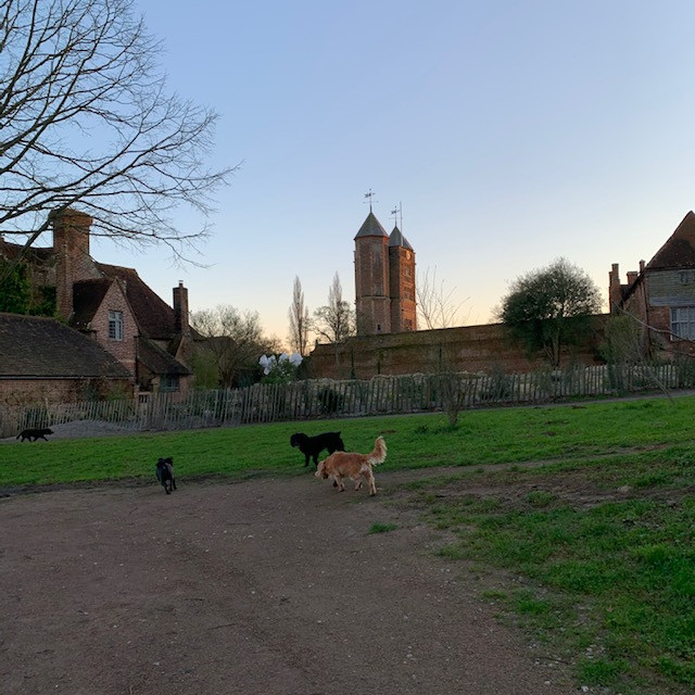 Sissinghurst Castle Walk