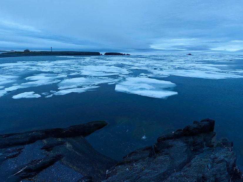 Cape Sakhanin, Novaya Zemlya