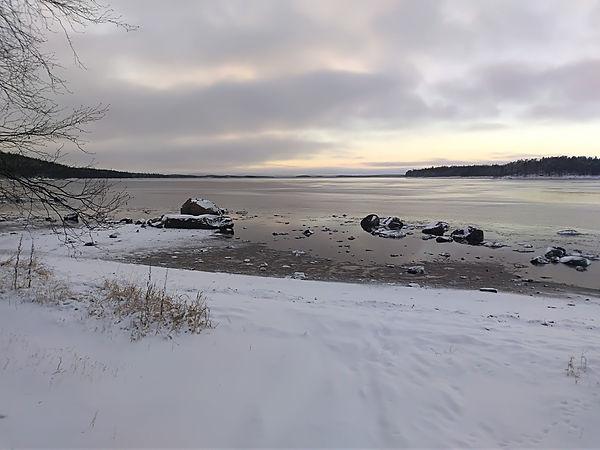Берег Белого моря на территории ББС МГУ