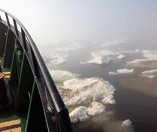 Лед в Печорском море - июль 2018.jpg