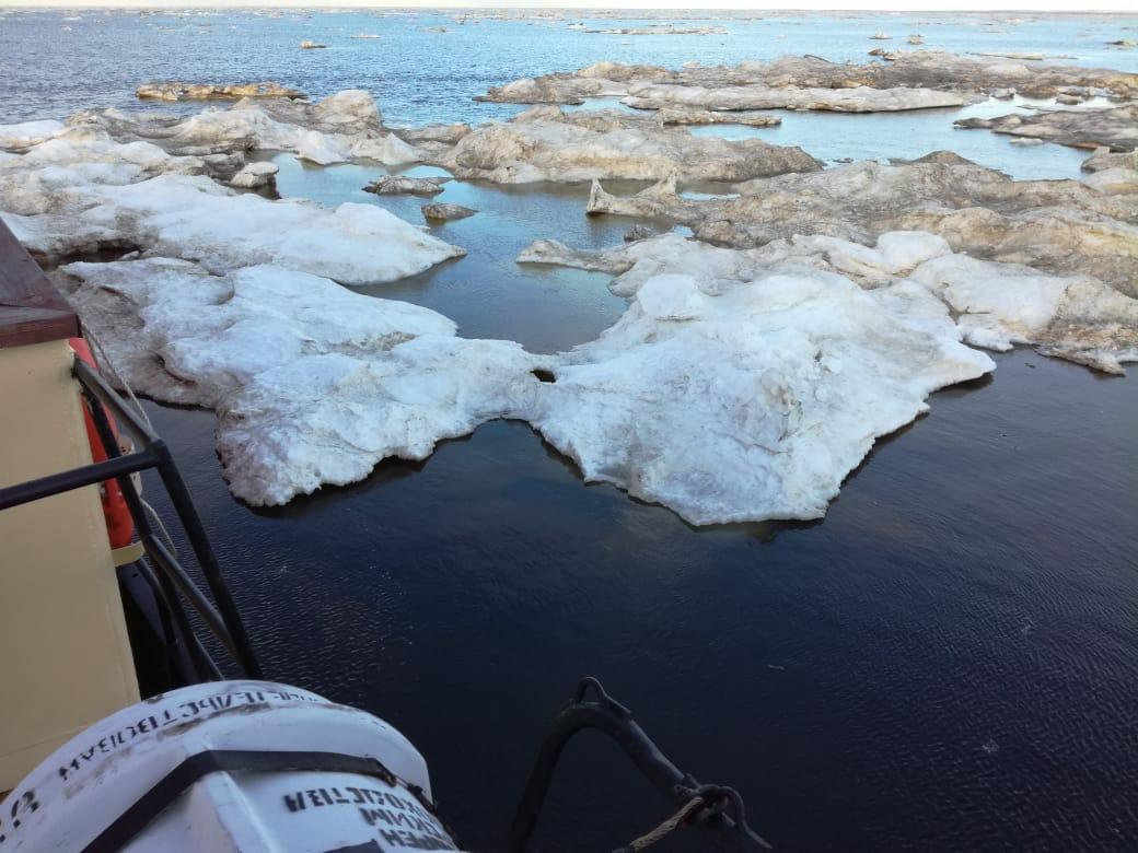 Лед в Печорском море