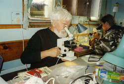 Рейс 1997 г. Белое море.