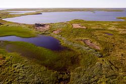 Остров Моржовец