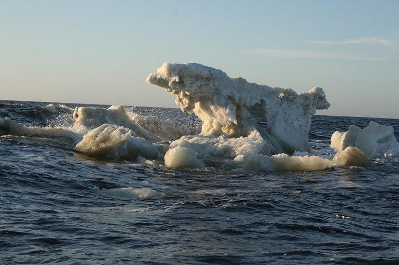 Льды карского моря Яхта Нерпа экспедиция