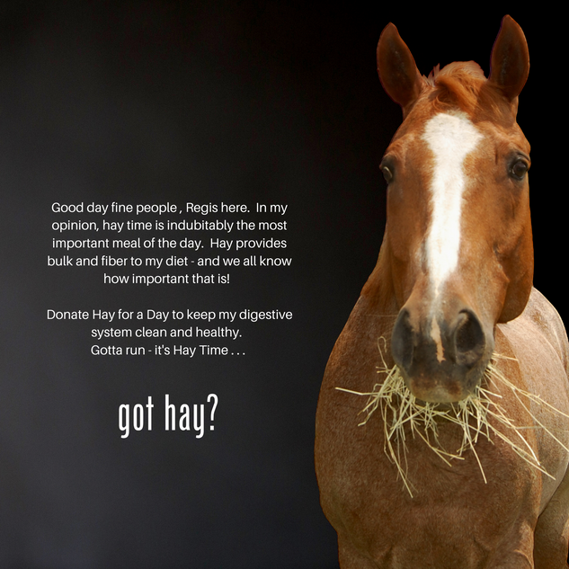 Hay for a Day-Regis.png