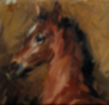Head of a Foal - Anthony Valentino Robin