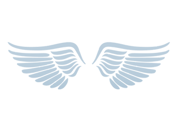 Light Blue Wings.png