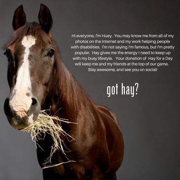 Hay for a Day-Huey.png