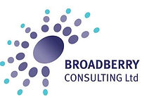 Broadberry Consulting Ltd Logo.jpg