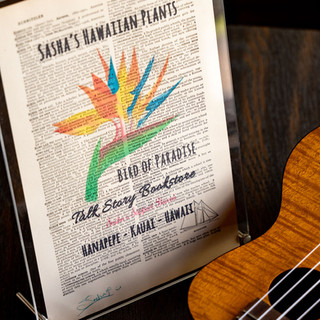 Art Print /  Sasha&Talk Story Bookstore
