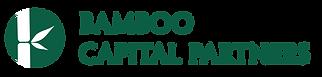 Bamboo Logo-11.png