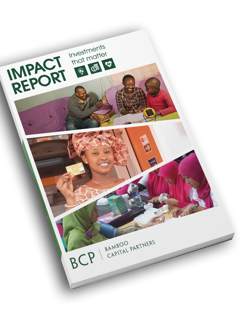 Impact Report - Bamboo Finance